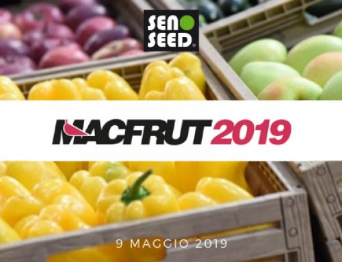 Seno Seed al MacFrut 2019, incontriamoci!