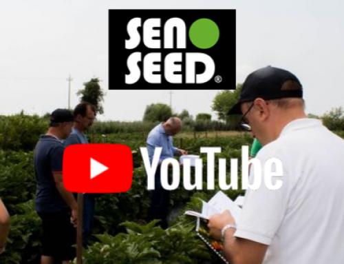 Seno Seed® sbarca su Youtube!